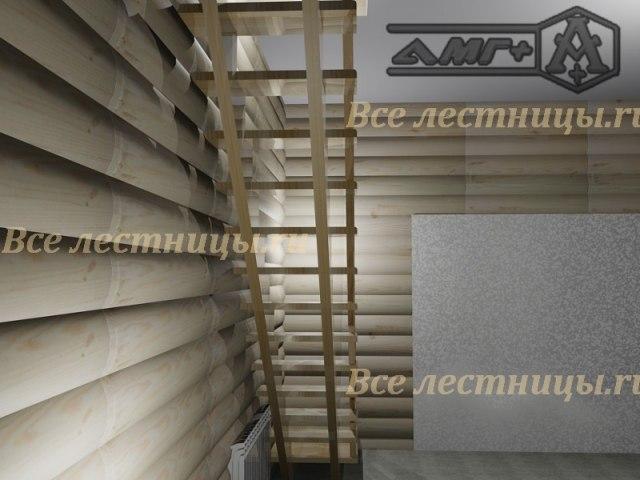 3D_18 1