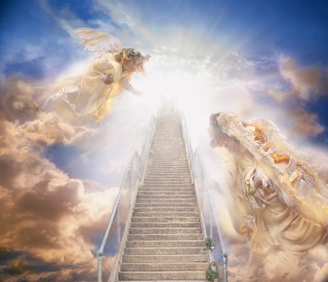 православном лестница любви картинки одной передач